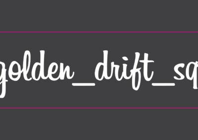 Chris Klein Golden Drift Squad Car Decals